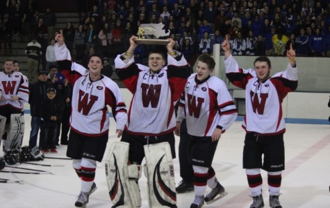 Watertown captures Division 3 North hockey title