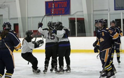 Both Watertown hockey teams advance in MIAA tournaments