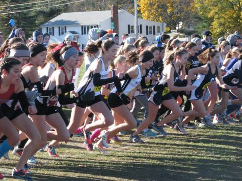 Watertown's Beth Powderly and Emily Koufos are front and center at the start of the Division 5 girls' race at the MIAA Divisional Cross-Country Championships at Wrentham Development Center Nov. 12, 2016. Koufos won the race in 19 minutes 5.96 seconds. Powderly finished in 19th place in 20:52.64.