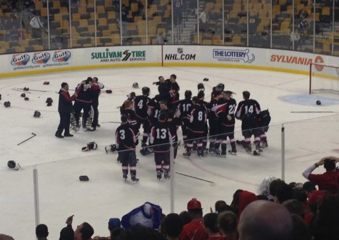 The Watertown High boys' hockey team celebrates its 2-1 victory at TD Garden on Sunday, March 15, 2015. The win brought Raiders the school's first MIAA Division 3 state hockey championship.