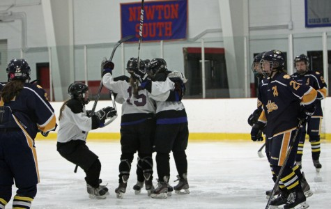 Both Watertown hockey teams advance in MIAA tournaments