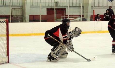 Watertown High MIAA hockey Weston Division 3 North March 7, 2016 Sarah Lampasona