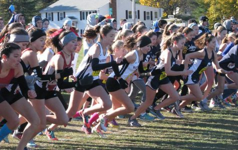 Two more impressive feats by Koufos, Piccirilli at MIAA cross-country meet