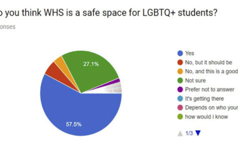 Student survey provides insight into LGBT issues at Watertown High