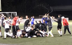 Watertown High boys' soccer needs OT to advance