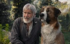 Harrison Ford is the human star of